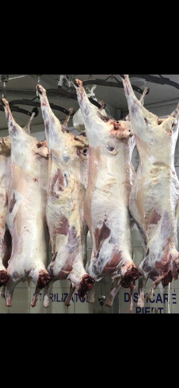 Купить Говядина свежее и сырое мясо