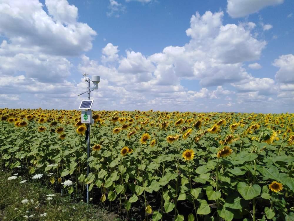 Купить Метеостанции для сельского хозяйства