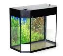 Buy Aquariums are panoramic