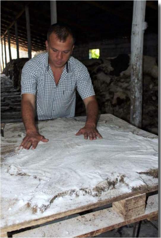 Skin sheep in Moldova for Expor