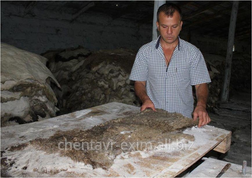 Купить Шкура овечья в Молдове на Экспорт