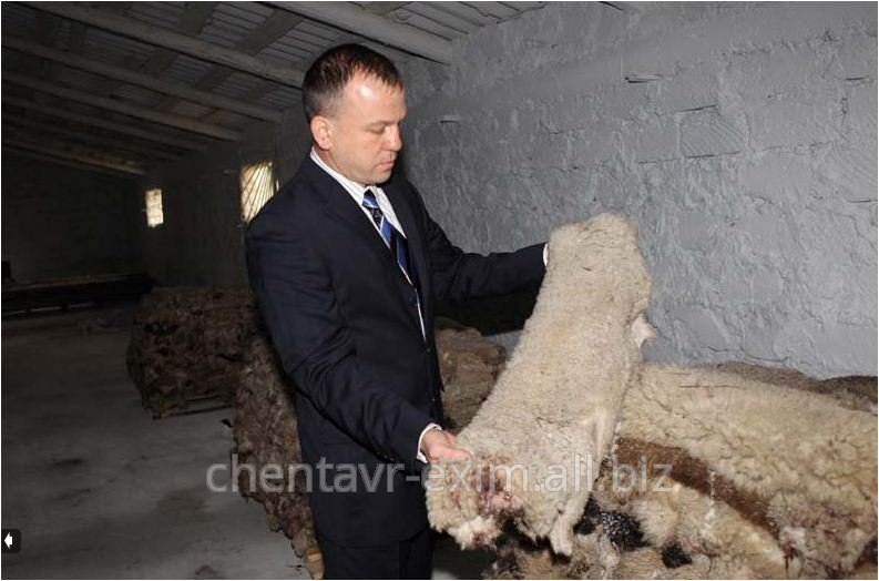 Шкура овечья,Chentavr-Exim,SRL