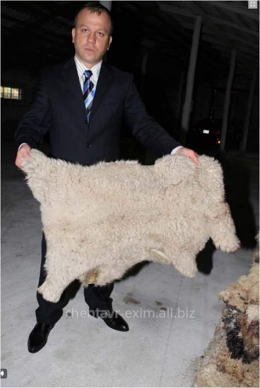 Шкура овечья,Экспорт шкур,Экспорт шерсти,Экспорт орехов