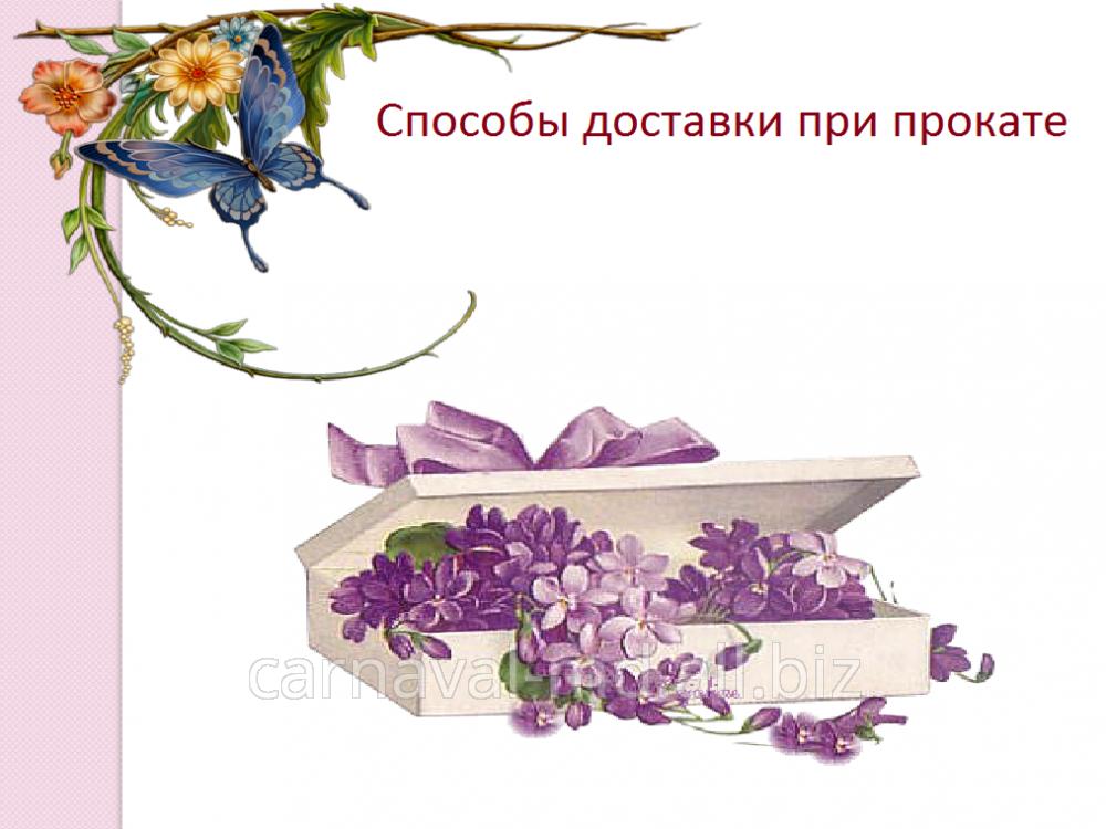 cumpără Способы доставки при прокате