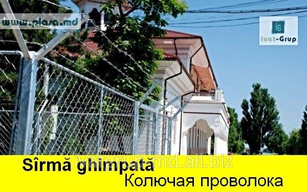 SIRMA GHIMPATA IN MOLDOVA,КОЛЮЧАЯ ПРОВОЛОКА,GARDURI,PLASA