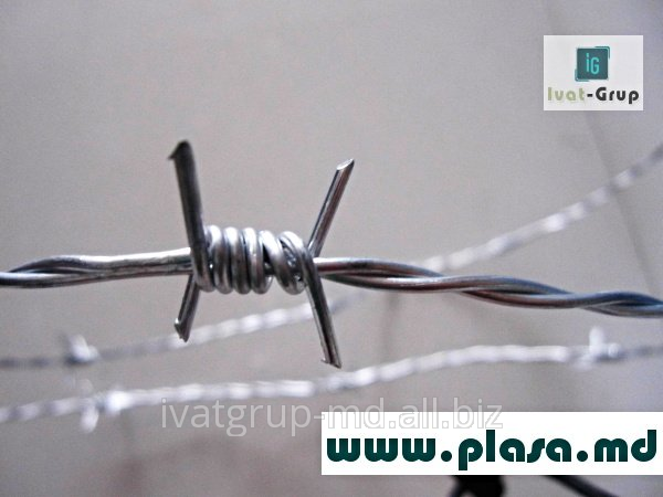 Buy SIRMA GHIMPATA, BARBED WIRE