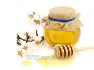 Мёд и пчелопродукты