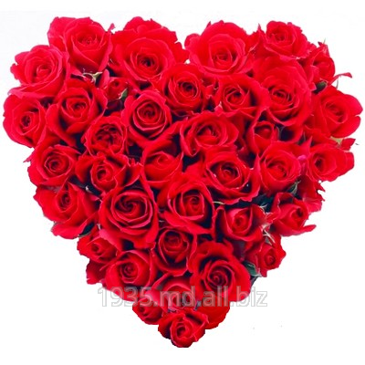 Buy Heart from flowers in Chisinau, delivery