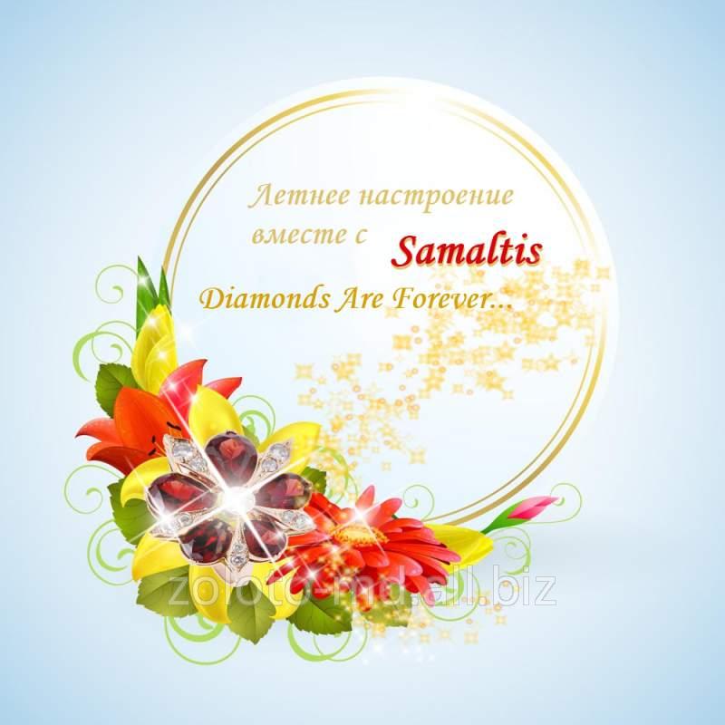 Золото Молдовы! Samaltis,SRL