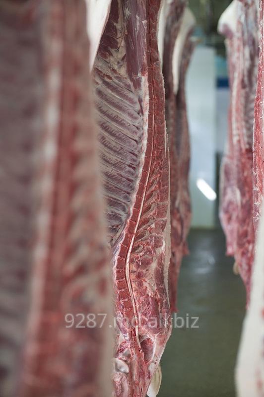 Купить Свинина в Молдове