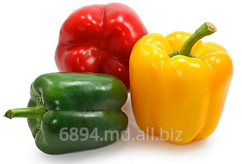Buy Pepper