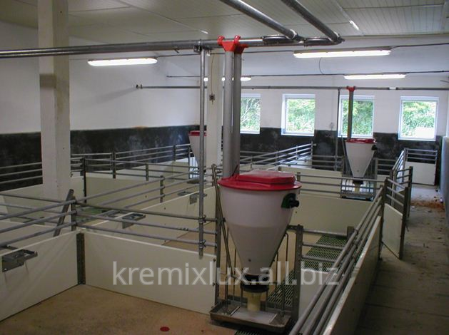 Buy Cages for pigs-otjemyshey in Moldova and for expor