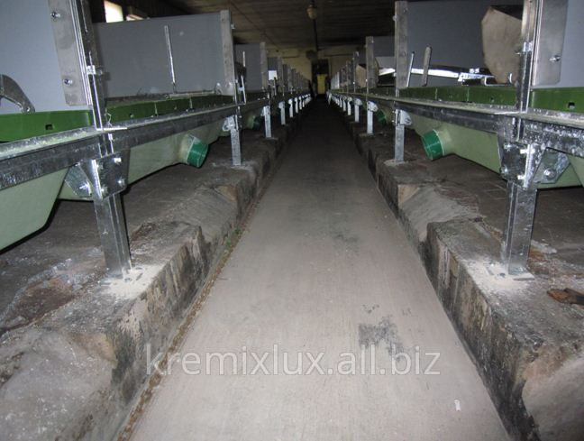 Buy Installation of manure bathtubs on the directing beams