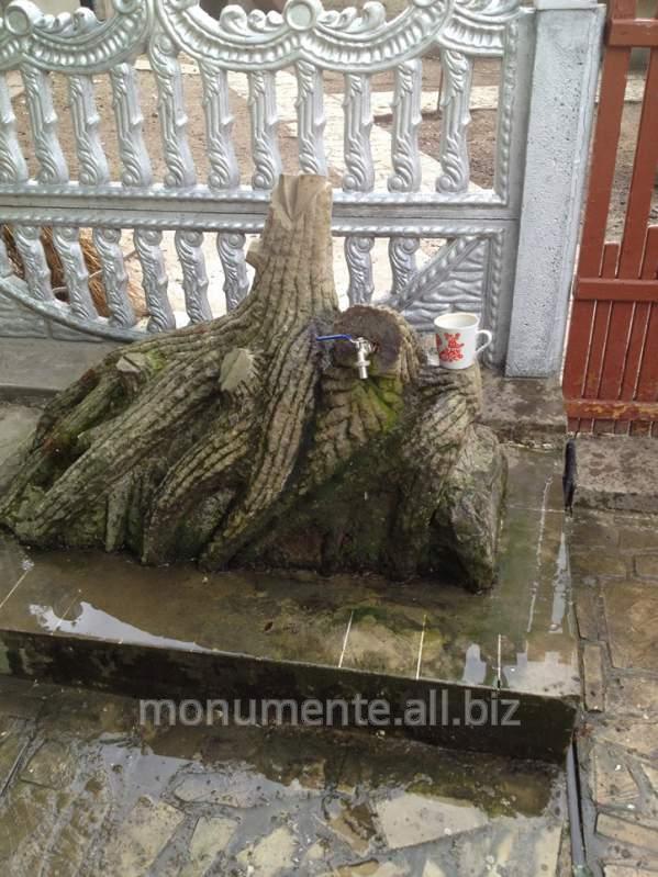 Купить Дерево( Copac)