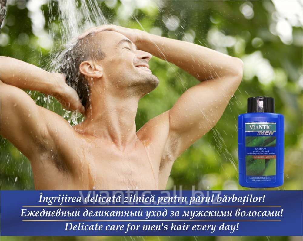 "Buy Shampoo MAN'S ""VIANTIK the ASSET plus"" with oil of germs of wheat and proteins [290 ml]"