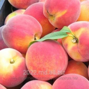 Buy Peaches are the Moldavian