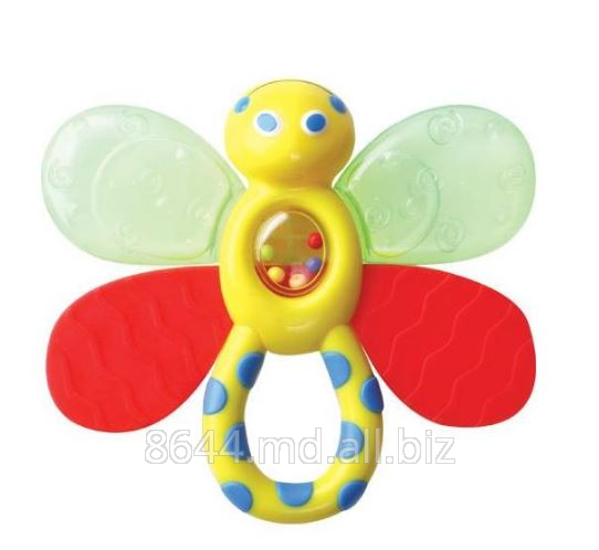 Buy Toys for children in Moldova, Toys for teeth nurseries in Moldova