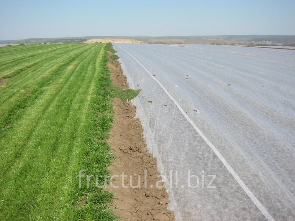 Купить Agril-pânza care te ajută să obţii recolte timpurii