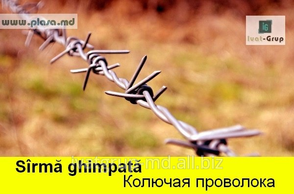 Buy Barbed wire
