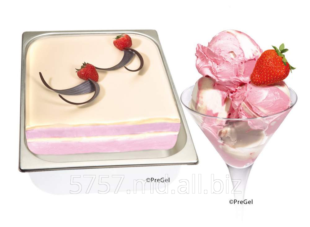 Купить Ингредиенты для мороженного ,Ingrediente pentru inghetata Pregel