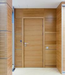 Doors deafs shponirovanny