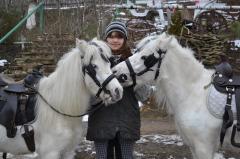 Pony in Moldova