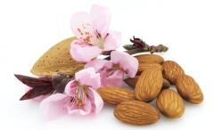 Almonds variety Victoria