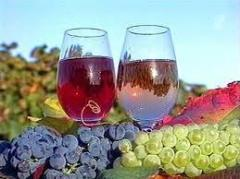 Wine materials Moldova