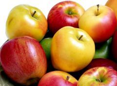 Яблоки осенние