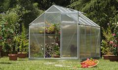 Greenhouses farmer of polycarbonate - Transparent