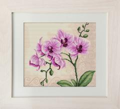 Embroidery cross of B2227 Orchid Cross stitch