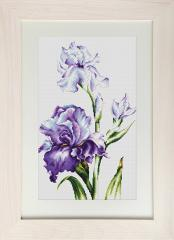 Embroidery cross of B2251 Irises Cross stitch