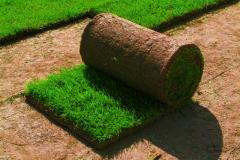 Landscape gardening lawn, lawn in Moldova