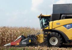 Dominoni harvesters for corn