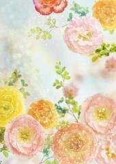 Decorative bright photowall-paper