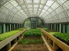 Greenhouses usual in Moldova, Greenhouses tunnels in Moldova