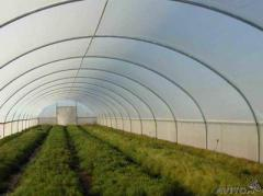 Greenhouses are industrial