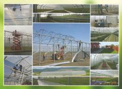 Greenhouses for cultivation of vegetables, Greenhouses for a flower cultivation, Greenhouses for cultivation of strawberry