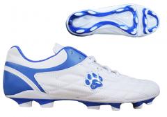 Спортивная обувь, Sport shoes