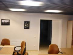 Ceilings for the house and office