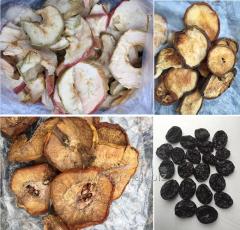 Fructe uscate expor
