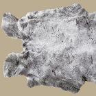 Fur of rabbi