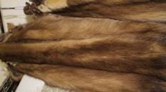 Fur of mink