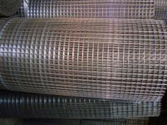 Grid plaster price, Chisina