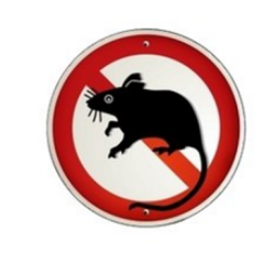 Means for extermination of rats of Ratitsida