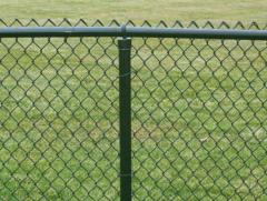 Fences are mesh