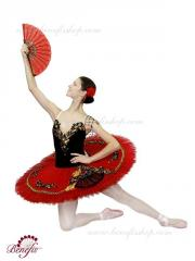 Ballet costumes Nutcracker Don Quijote Soloist