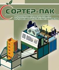 Liniile pentru fabricarea lazilor din carton