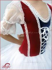 Ballet costumes Giselle Stage costume F 0055