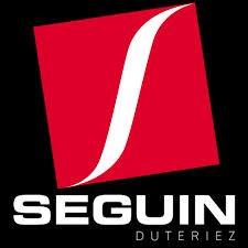SEGUIN - каминные чугунные топки из Франции....